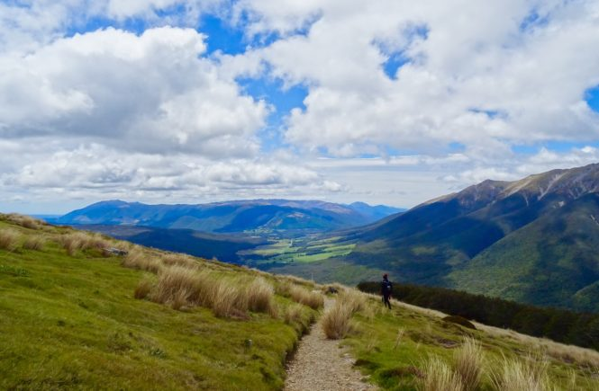 A year in New Zealand: How to get a Working Holiday Visa extension