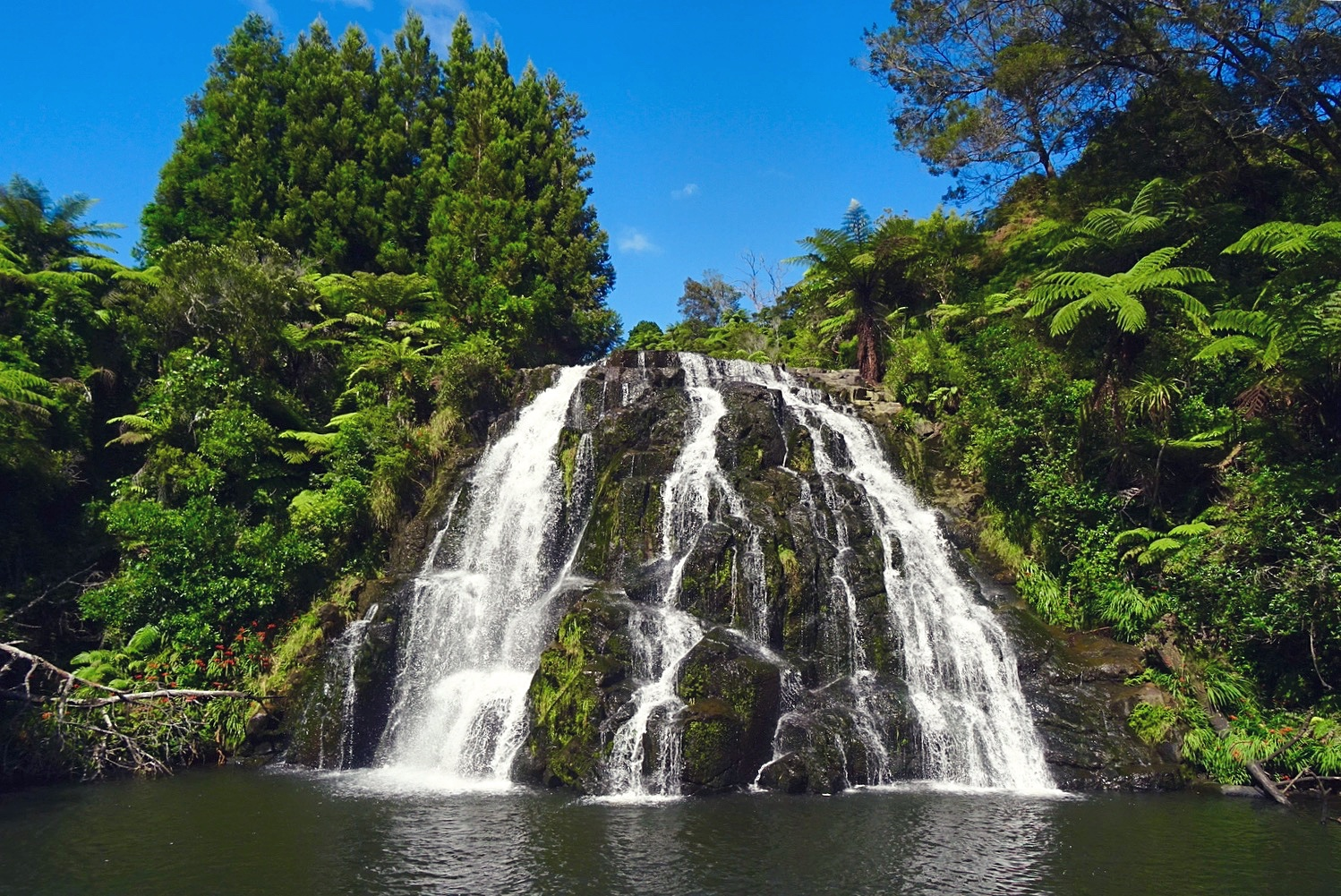 Owharoa Falls, New Zealand