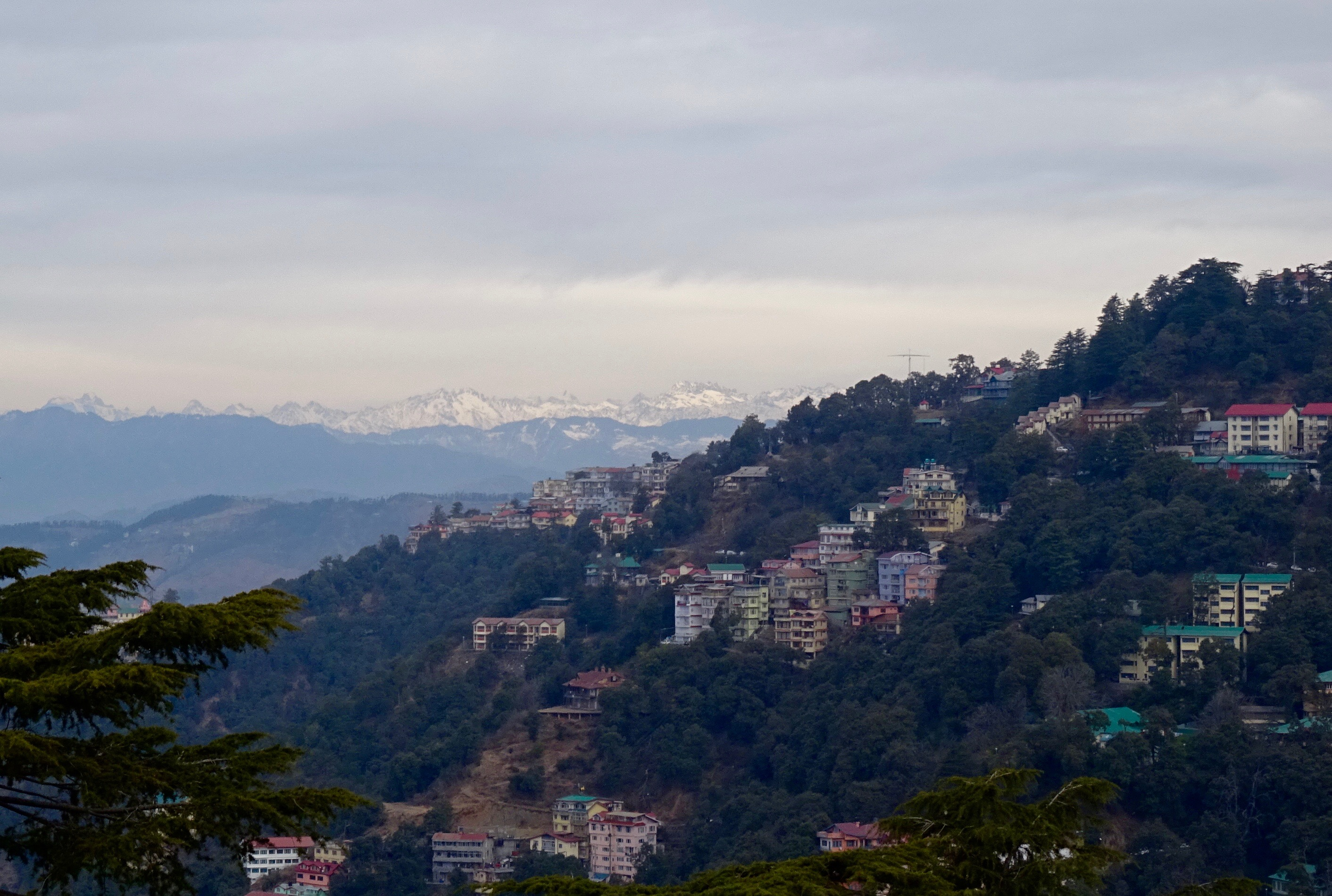 The view of the mountains from Shimla