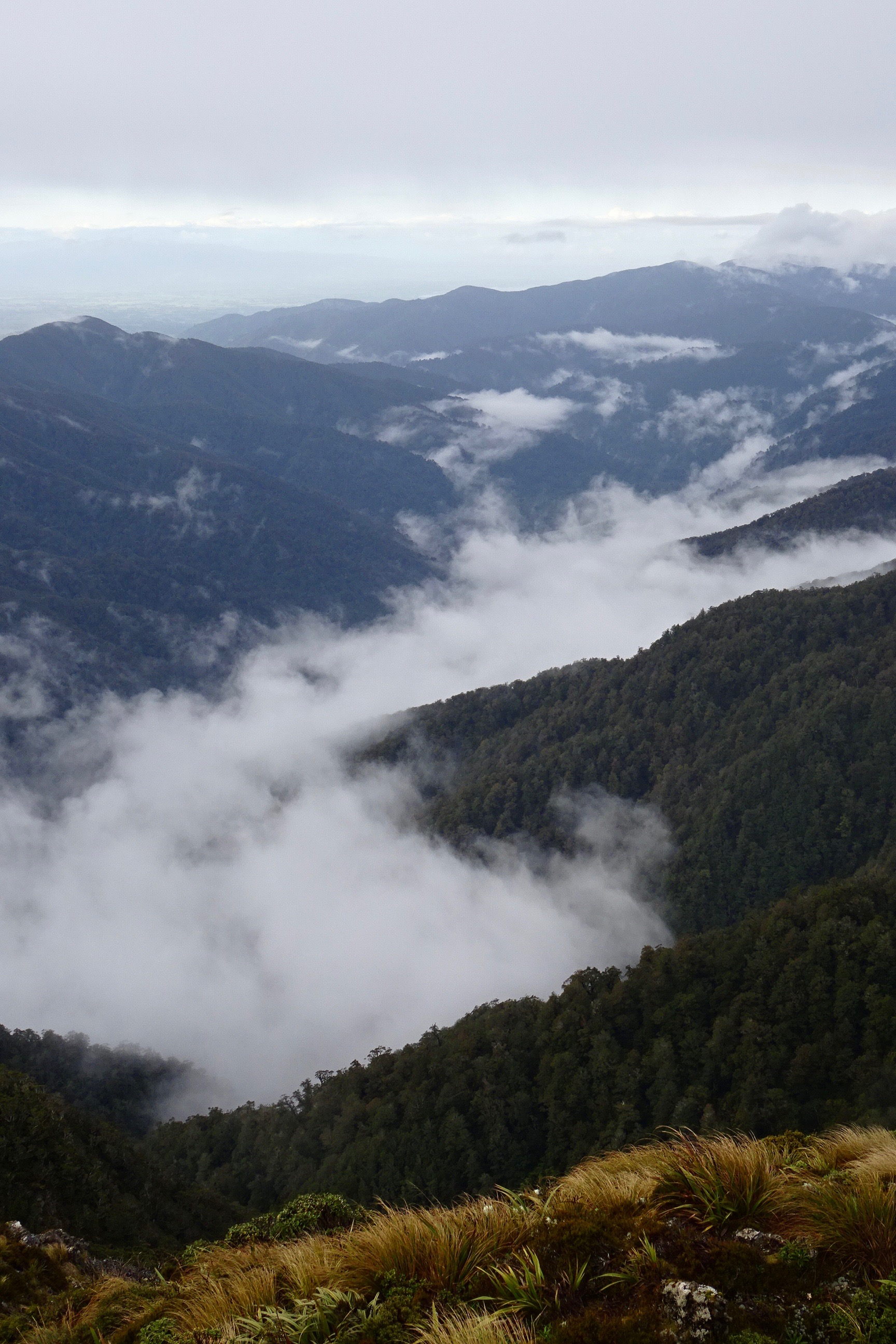 Cloudy valleys - The view from Powell Hut