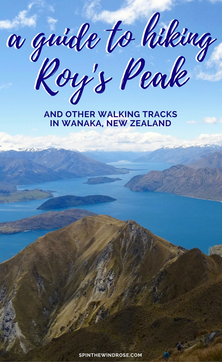 Is Roys Peak Overrated - spinthewindrose.com
